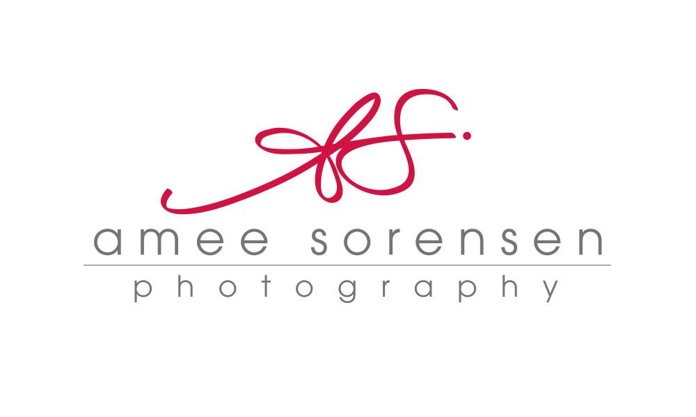 logo-amee
